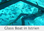 Glass_Boat_Istrien